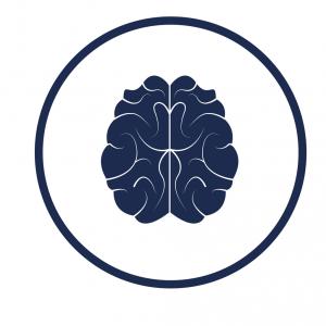 Illustrasjon av hjerne